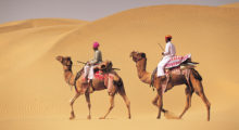 popular Palaces to explore in Rajasthan