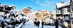 Tempo Traveller hire for Shimla for family getaway