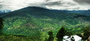 Tempo traveller for Almora – Enjoy the grandeur of the beautiful hill station