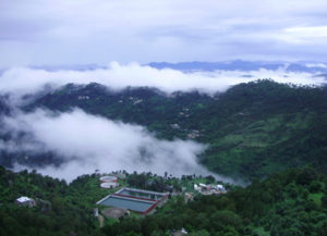 Looking for a tranquil escape, prefer tempo traveller for Kasauli