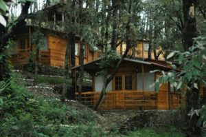 Tempo traveller for Shoghi – A paradise on earth
