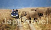 Jim Corbett with Sightseeing Offer